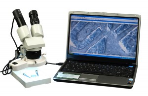 OMAX Binocular Stereo Microscope 10X-30X with Digital Camera +Ring Light